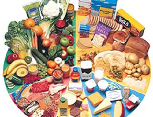 Cuestiones de Alimentación